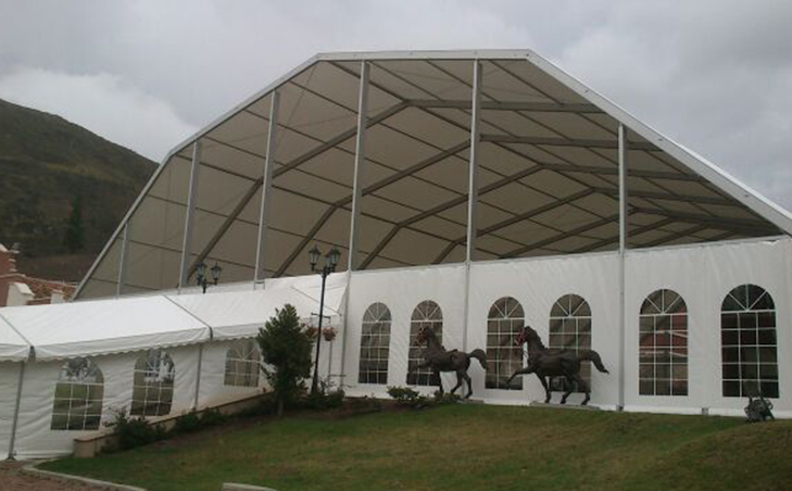 carpa poligonal evento